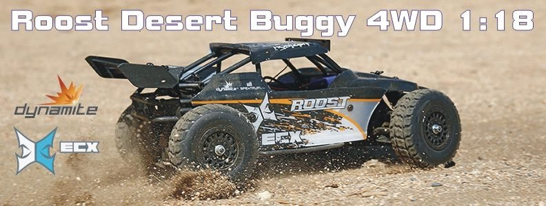 Roost 4WD Desert Buggy